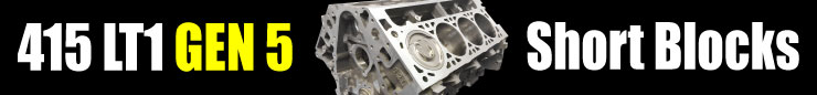 415 LT1 Real Street Pump Gas Short Block